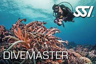 SSI Dive Master